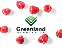 🇽🇰 Greenland plantation - Brand Identity