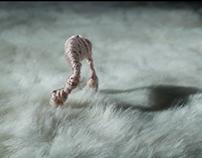 untitled universe- fiber animation