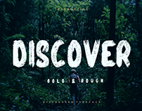 DISCOVER - FREE BRUSH FONT