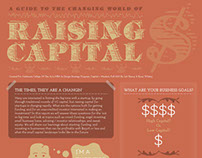 Raising Capital Infographic
