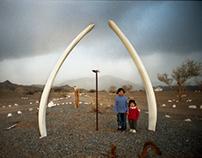 Huellas, ellas y ballenas 2012