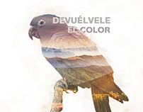 WWF - Devuélvele el color