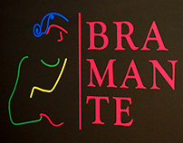 Bramante in Bergamo
