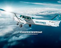 Poster - Halcones Escuela de aviación