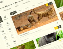 NatGeo - Redesign + Freebie