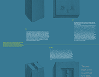 Type Designer Panels