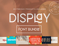 THE MODERN DISPLAY FONT BUNDLE