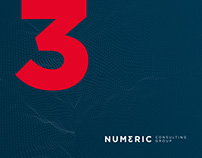 Numeric Consulting Group
