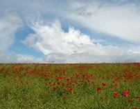 English Country Walks: Eynsford