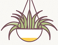 How to care for your houseplants infographic