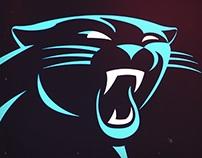Carolina Panthers Work