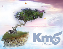 Km5 Posters