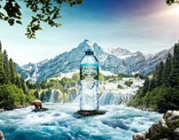 Poland Spring »Natural Spring Water«