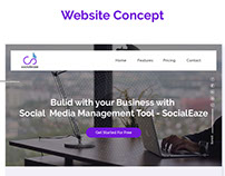 SocialEaze - Website Concept
