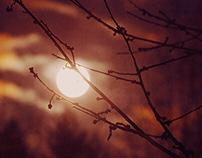 Lunar/Solar