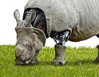 Cyborg Rhinoceros