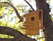 Art Deco Birdhouse & Branding