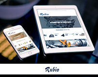 Website design for Rubio - Lubricants provider
