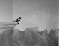Talking Walls: Crows/ Reviving Souls