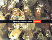 Michael Sorkin Studio: Wiggle (Works in Progress)