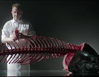 """""""Mar de Sueños, una vida entre atunes rojos."""""""