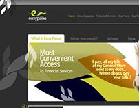 Design Options for Telenor Easy Paisa
