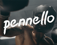 Pennello (Dry Brush Font)