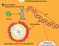 Brain Cancer Biomarker: Circulating Mutant DNA