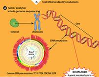 Brain Cancer Biomarker: Circulating Mutant DNA