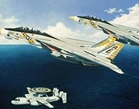 Naval Aircraft, Tomcats & Hawkeye