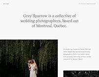 Grey Sparrow