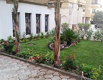 My Building Front Garden In Maadi Designed By Me