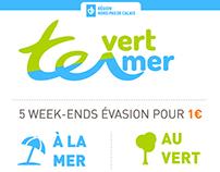 Infographie : Hauts de France TER / Mer - Vert