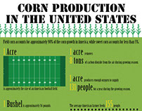 Corn Production Infographic