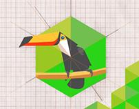 Processo Criativo / Identidade Visual Amazon Play.