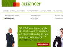 Alliander and Liander | Online identity and website