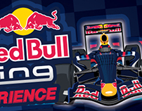 Red Bull experience!