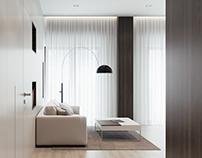 Minimalism interior 2016