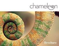 Chameleon Brochure Template
