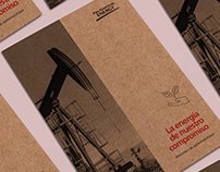 Pan American Energy  | Resumen ejecutivo