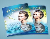 Synobar Brochure