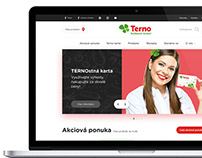 TERNO web redesign