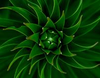Green spirals...