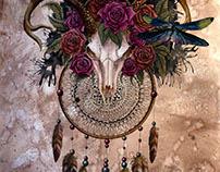 Skull dreamcatcher