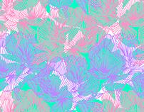 Illustrations fleurs