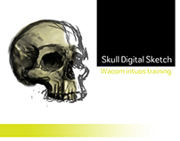 Skull digital sketch | Wacom intuos training.