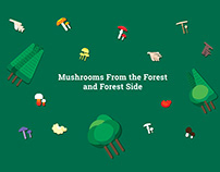 Mushrooms From the Forest and Forest Side - Infographic
