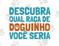 Teste Doguinho