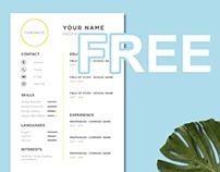 FREE A4 CV Template