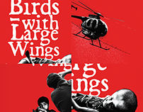 Birds With Large Wings 2015